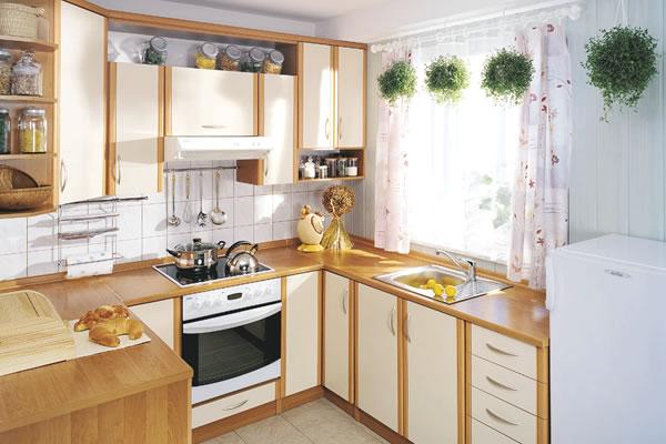 Образцы интерьера кухня