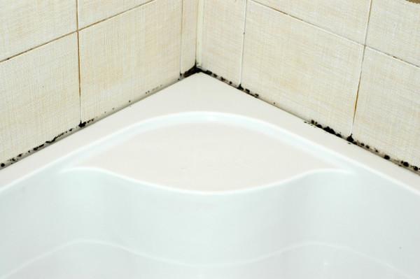 Избавление от плесени в ванной комнате