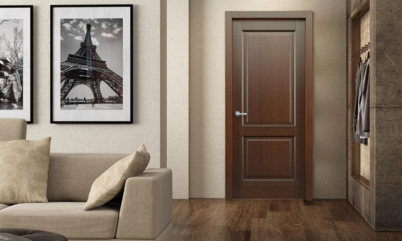 kak-vybrat-dveri-v-zal-osobennosti-i-rekomendacii-12