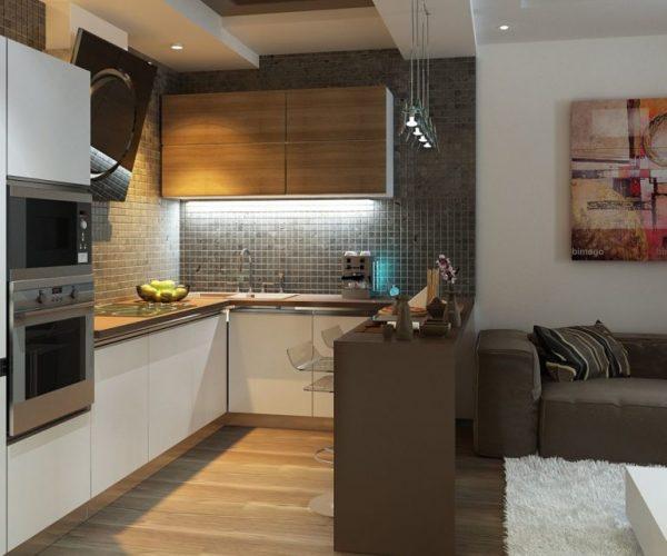 Кухня с диваном и барной стойкой
